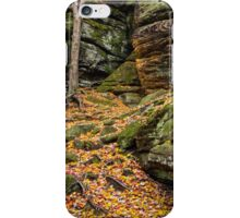 Cliffs of Autumn Color iPhone Case/Skin