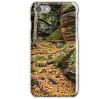 Cliffs of Autumn Color iPhone Case/Skin