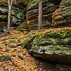 Cliffs of Autumn Color by Kenneth Keifer