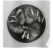 Sleeping Badgers Poster