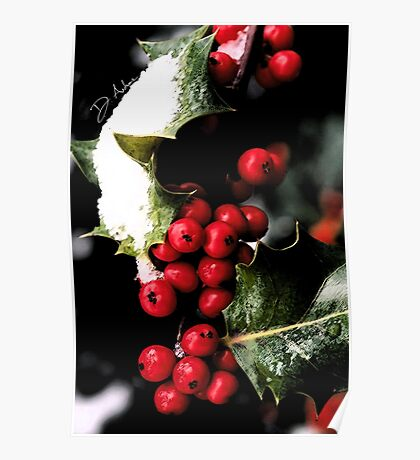 Holiday Holly Poster