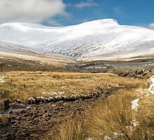 Pen y Fan in Winter Brecon Beacons Wales by Nick Jenkins