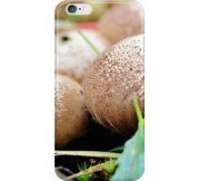 Earthly Treasures iPhone Case/Skin