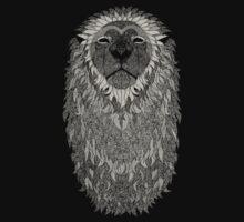 Majestic Lion by Jasonschwarts