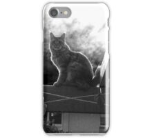 Cat on a Roof iPhone Case/Skin