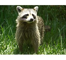 Who You Lookin' At? Photographic Print