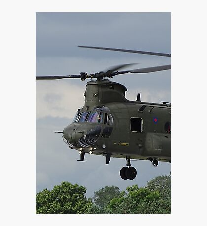 Chinook  Photographic Print