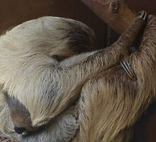 Mother and child. by Sandra Caven