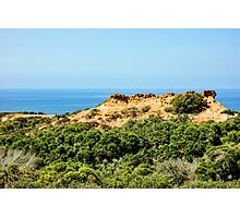 Torrey Pines California - Chaparral on the Coastal Cliffs Photographic Print