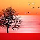 Autumn by shalisa