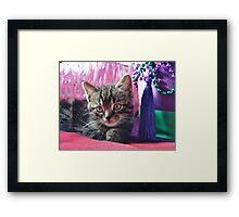 Kitty Daydream Framed Print