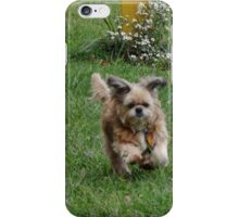 Biddy has his bounce back iPhone Case/Skin