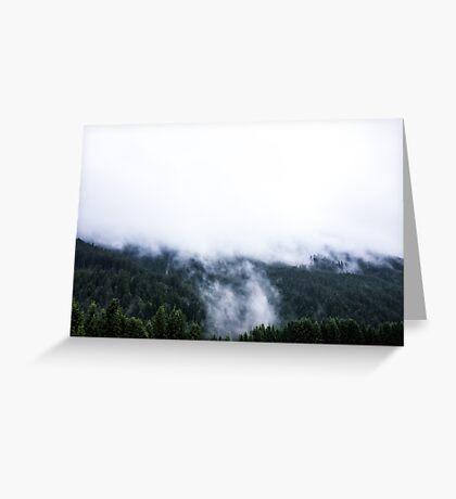 Austria - Feldkirch - fog in the spurce woods Greeting Card