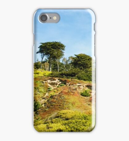 San Francisco Colorful Spring -  iPhone Case/Skin