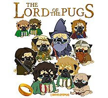 THE LORD OF THE PUGS Photographic Print