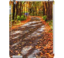 Johnson's Mound III iPad Case/Skin