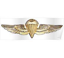 Naval Parachutist Poster
