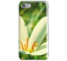 Lily Flower Reaching High iPhone Case/Skin