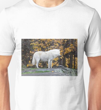 Arctic Wolf - Parc Omega, Quebec Unisex T-Shirt