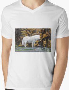 Arctic Wolf - Parc Omega, Quebec Mens V-Neck T-Shirt