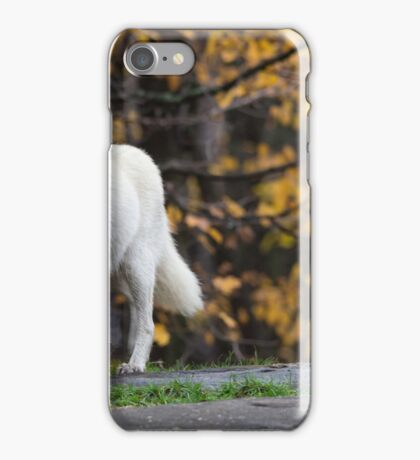 Pair of Arctic Wolves in fall iPhone Case/Skin