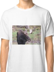 Large moose in a forest Classic T-Shirt