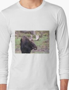 Large moose in a forest Long Sleeve T-Shirt