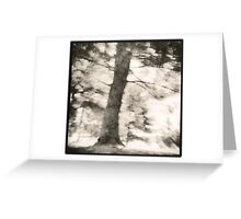 Contrasty Greeting Card