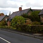 A Walk Around Hazelbank .. Craigs Road Cottages by oulgundog