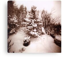 Snowed! Canvas Print