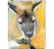 Curious Wallaby iPad Case/Skin