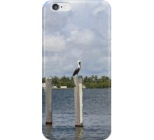 Pelican in Miami beach  iPhone Case/Skin
