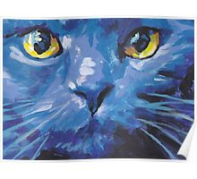 Russian Blue Cat Bright colorful pop kitty art Poster