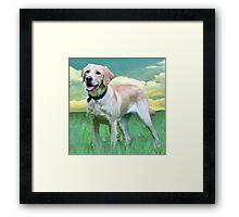 Gwyneth - Guide Dog In Training Framed Print