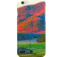 EVENING,CADES COVE iPhone Case/Skin