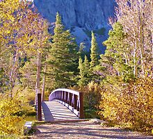 MAMMOTH LAKES BRIDGE OVER BABBLING BROOK WITH FALL COLORS by CHERIE COKELEY