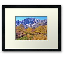COLORFUL AUTUMN MOUNTAIN RANGE IN MAMMOTH MOUNTAIN Framed Print