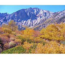 COLORFUL AUTUMN MOUNTAIN RANGE IN MAMMOTH MOUNTAIN Photographic Print