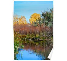 Cherry Creek Autumn Still  Poster