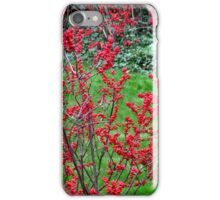 Winterberries iPhone Case/Skin