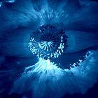 Poppy Blues By Lorraine McCarthy by Lozzar Flowers & Art