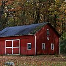 Red Barn On Bredinsburg Road by Geno Rugh