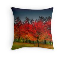 """ Red Dawn "" Throw Pillow"