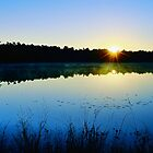 Sunrise Over The Lake by Sharon Woerner