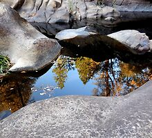 Reflections in a Dark Pool by Chris Gudger