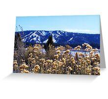 WINTERY PLANTS AND SNOW AT BIG BEAR LAKE Greeting Card