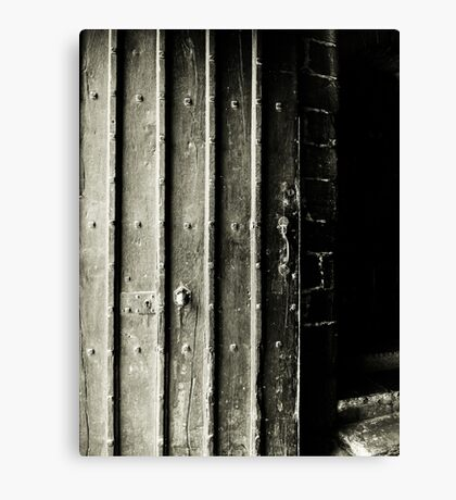 Doors of the World Series #2 Canvas Print
