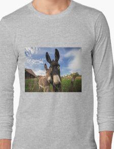 Donkeys! Long Sleeve T-Shirt