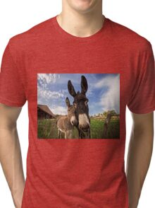 Donkeys! Tri-blend T-Shirt