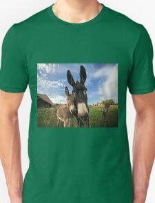 Donkeys! T-Shirt